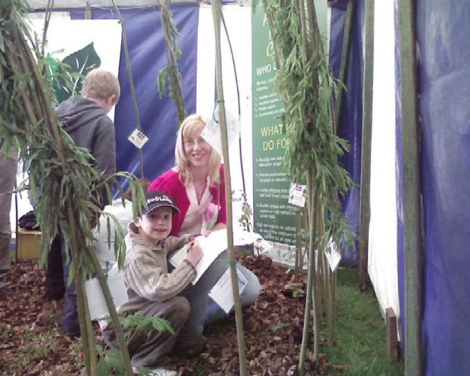 Woodland quiz in the willow dome
